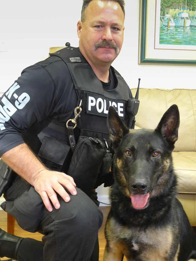 Canine Officer Rex - Root Canal Treatment