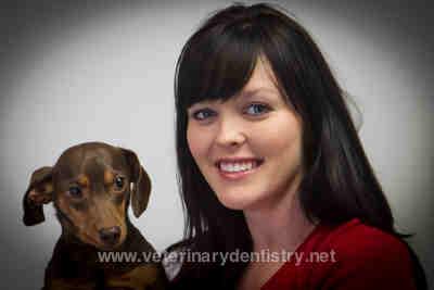 Henry a dog with Oronasal Fistula (ONF)