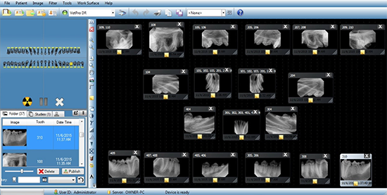 Pet Dental Radiography : Dental X-Ray in Dogs and Cats